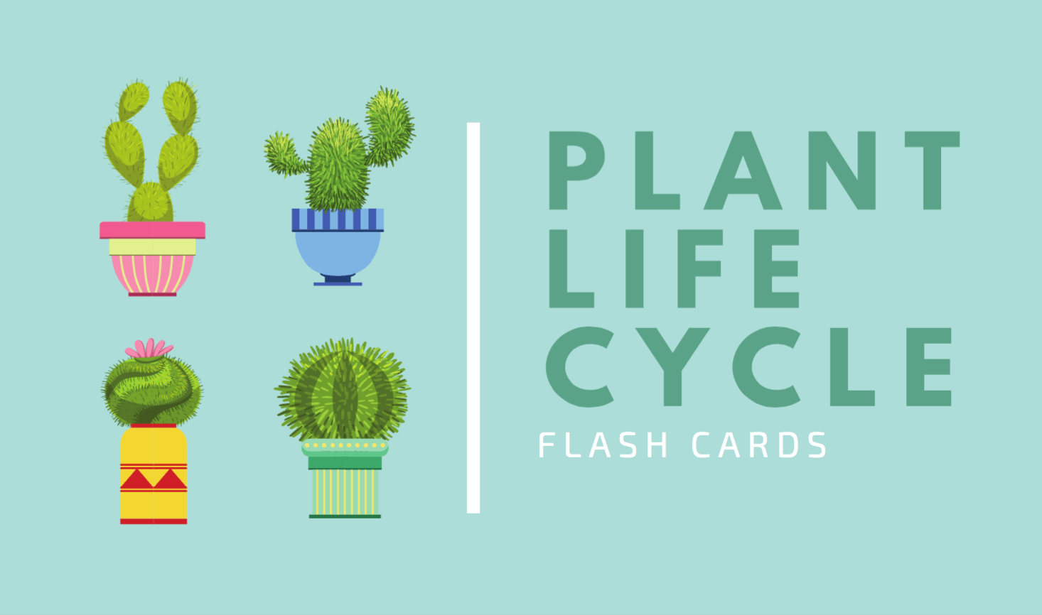 Free Online Flashcard Maker Design Custom Flashcards Canva