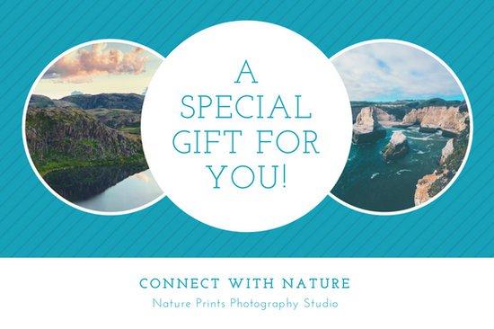 Дизайн подарочного сертификата с фотографиями природы в круглой рамке на синем фоне