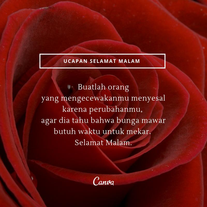 750 Koleksi Gambar Bunga Dan Tulisan Romantis Gratis Terbaik