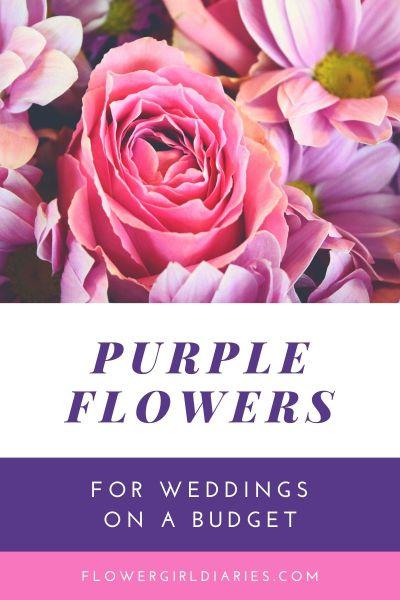 Шаблон открытки о распродаже цветов с яркими полями для текста