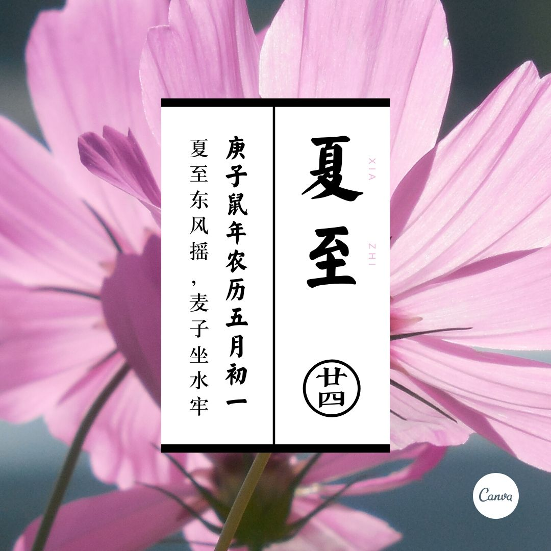 夏至微信朋友圈图片