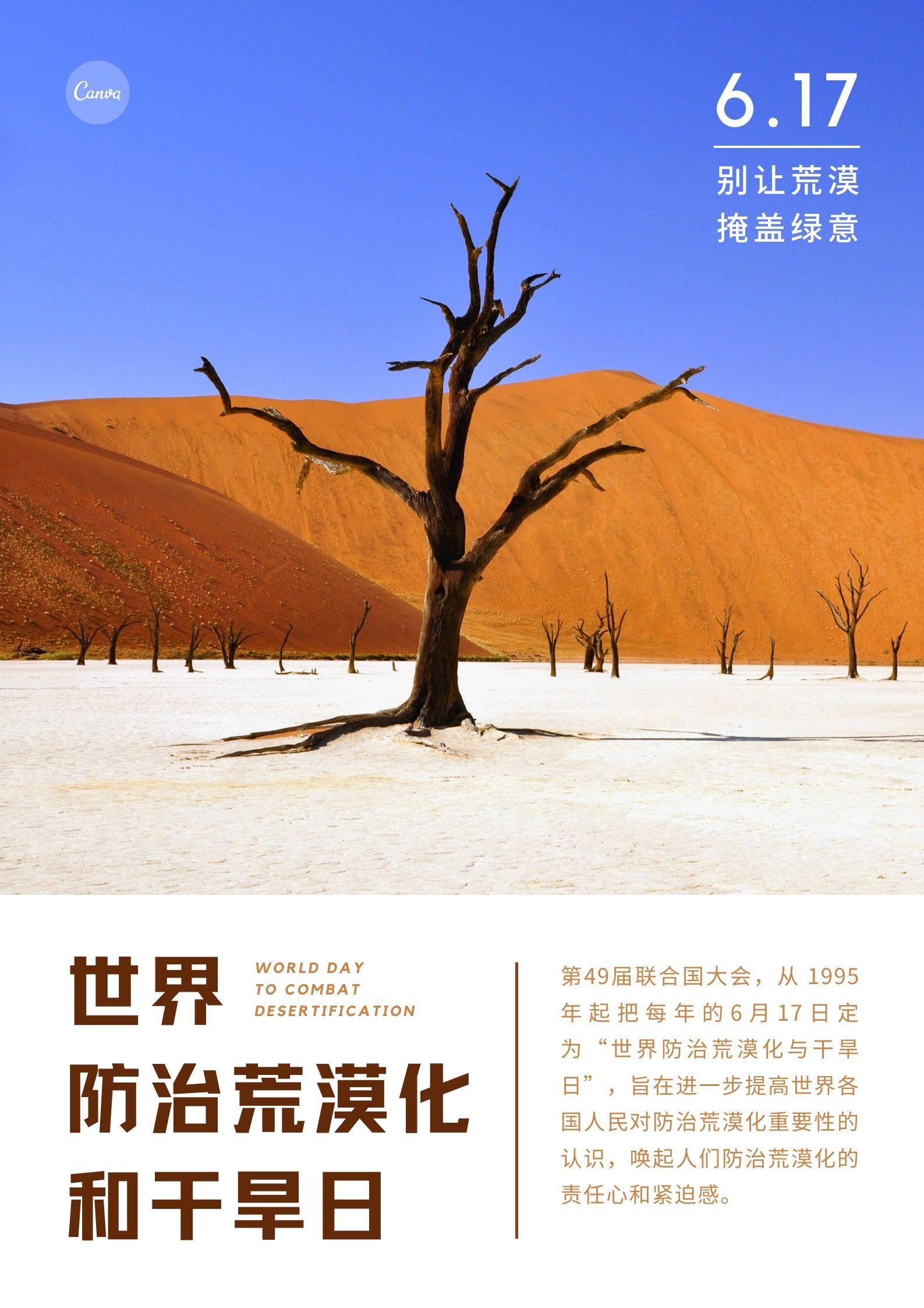 世界防止荒漠化和干旱日海报