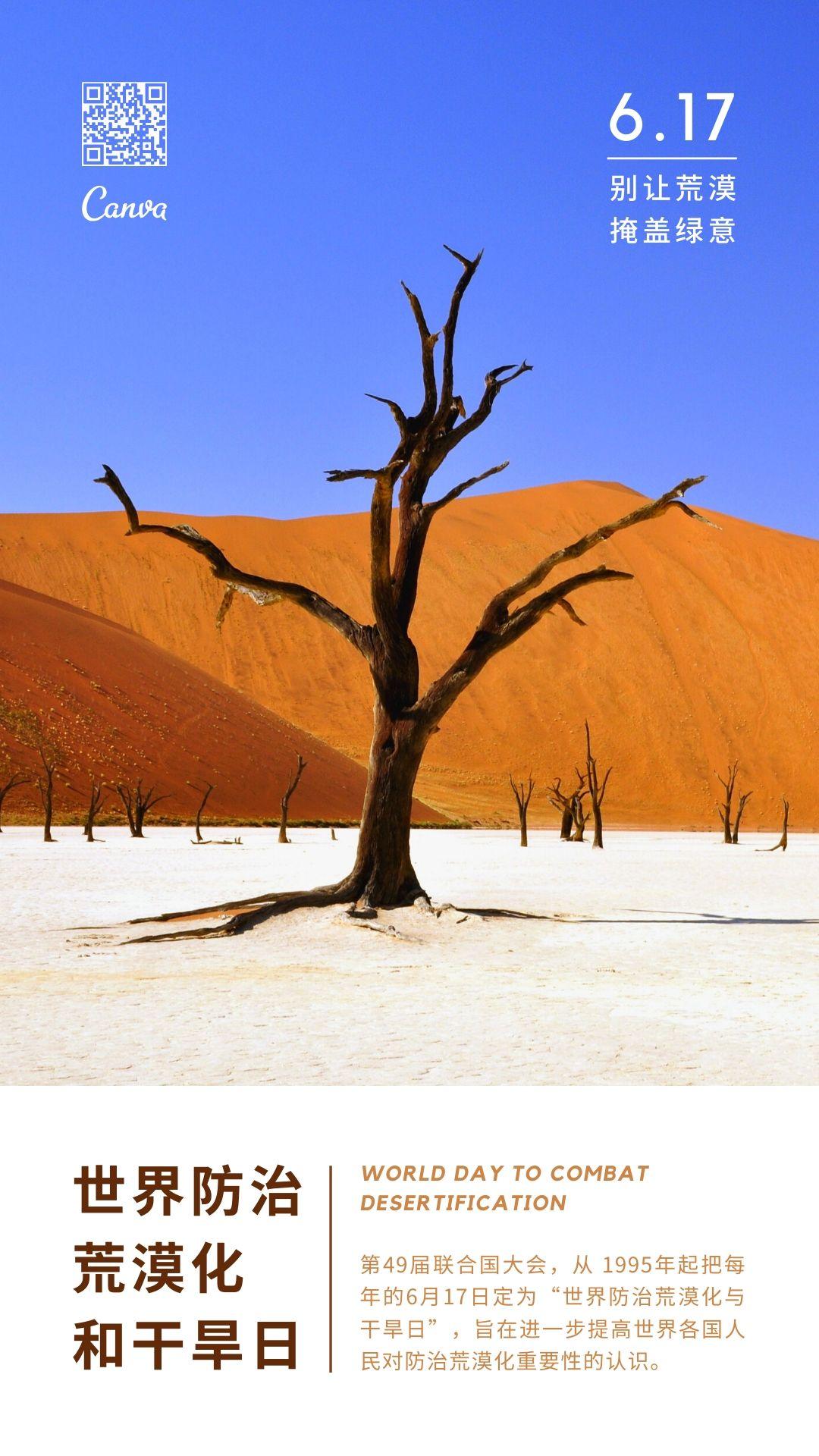 世界防止荒漠化和干旱日手机海报