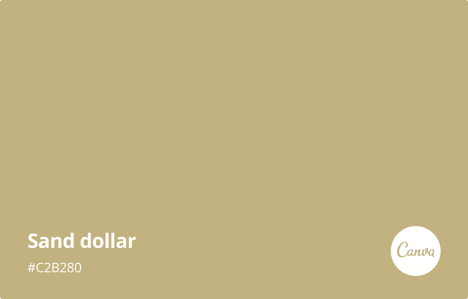 sand-dollar